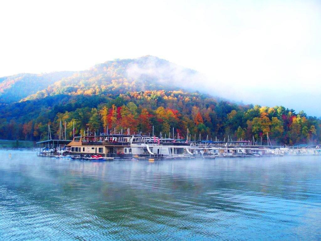 Watauga Lake Marinas